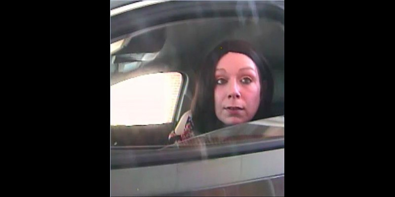 Image for Stolen Check